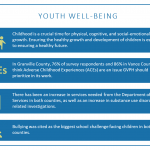 Community health priority: Youth well-being